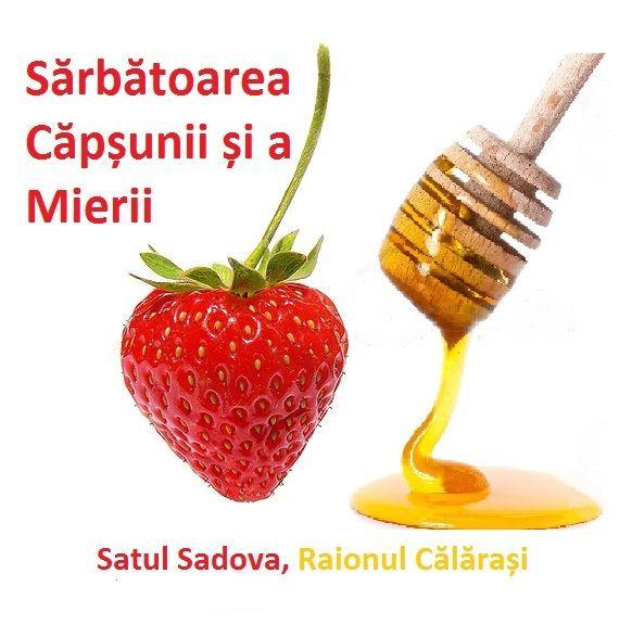 Various - Молдавская Эстрада